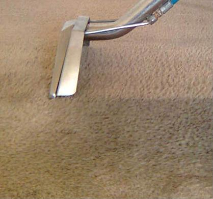 Carpet Steam Extraction